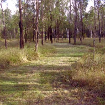 wlt-qld-tranquilitytwo04.jpg